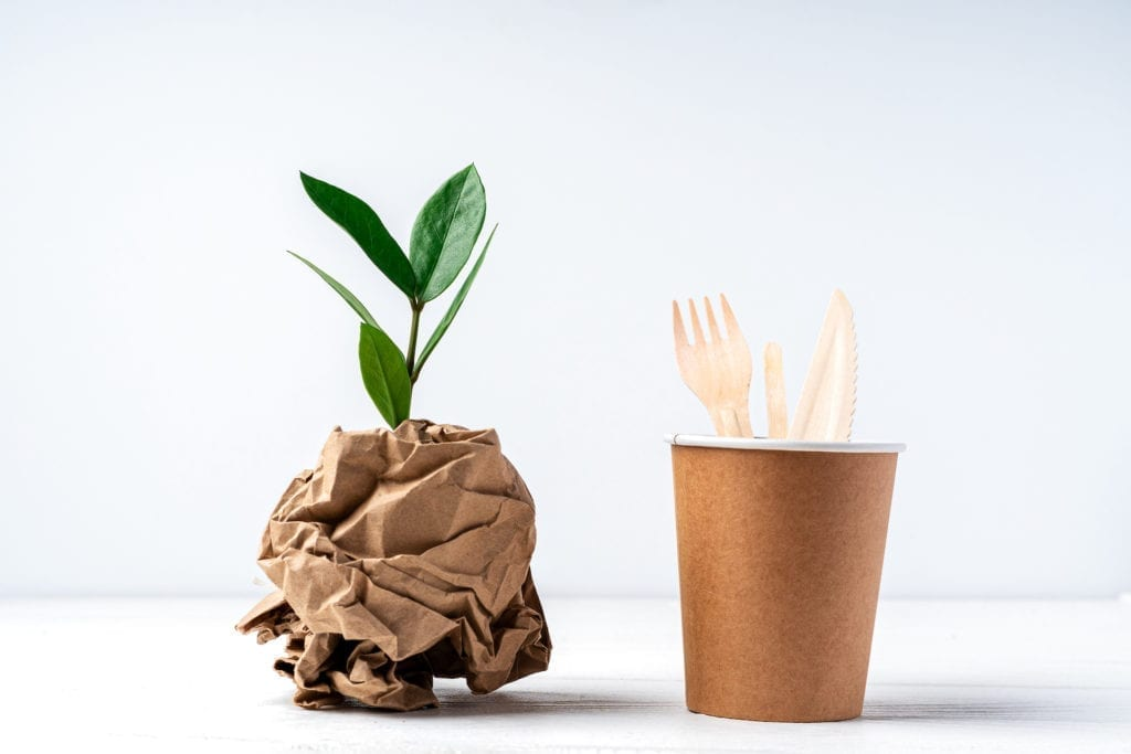 What is the difference between biodegradable and compostable