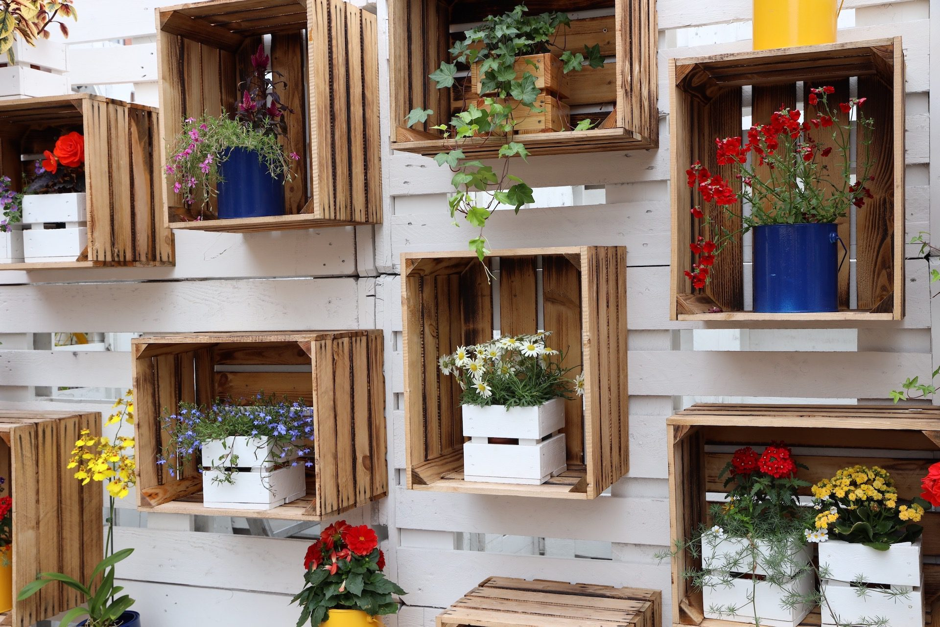 Upcycled wooden crates as wall decor